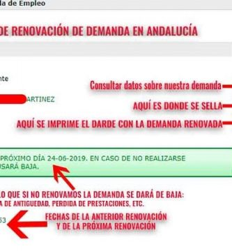 pantallazo-ejemplo-renovacion-demanda-de empleo